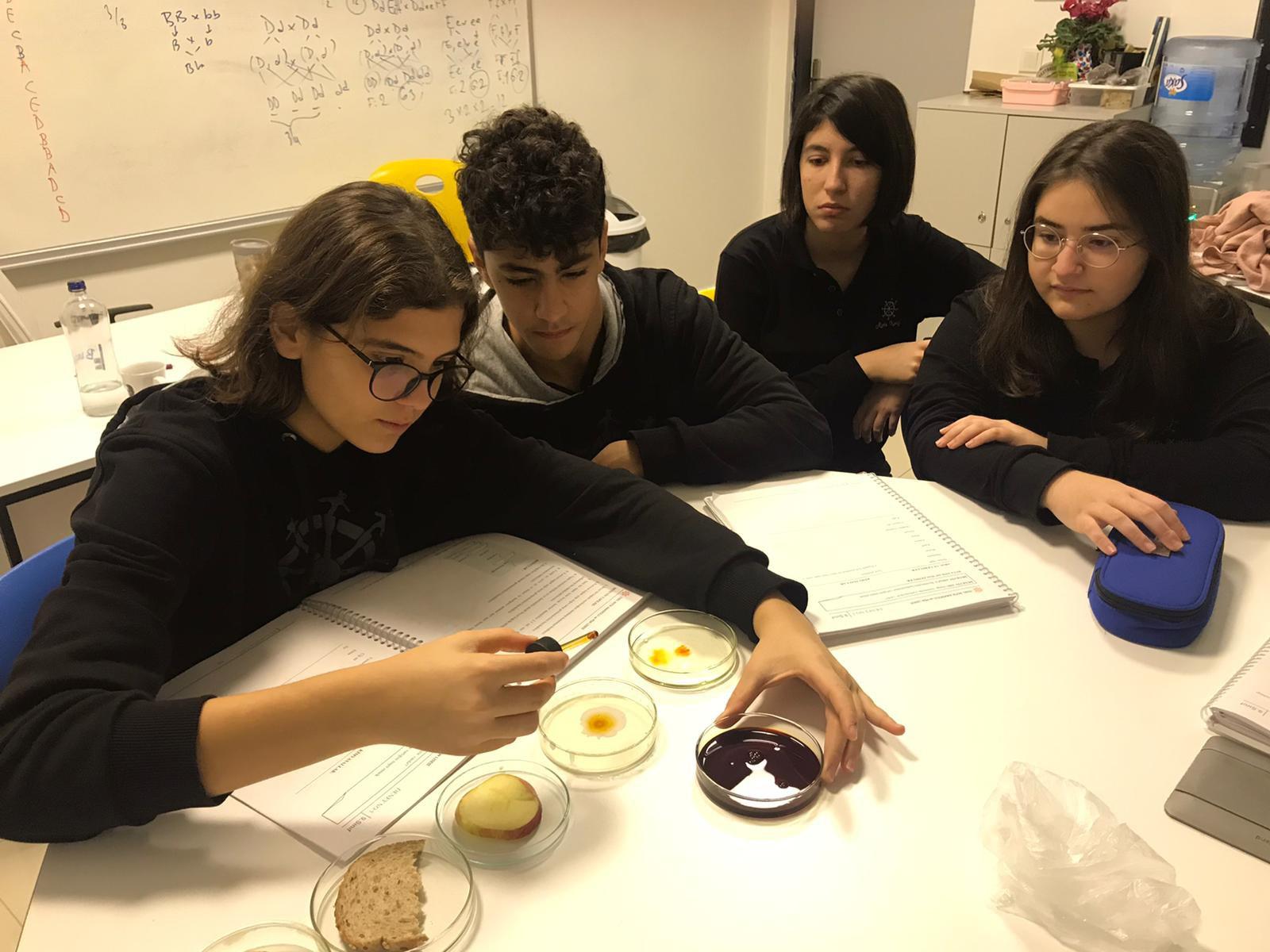 9.Sınıflar Biyoloji Laboratuvar Çalışmaları